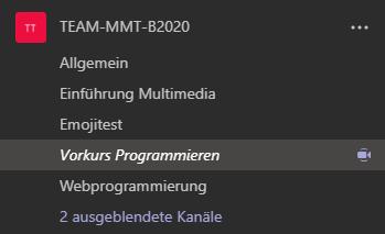 Screenshot MS Teams zeigt Team und Kanäle